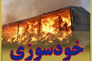 پوشش تبعی بیمه آتش سوزی(خودسوزی)